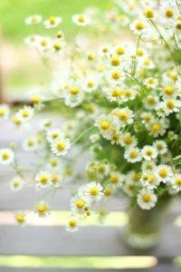 qué es la astenia primaveral